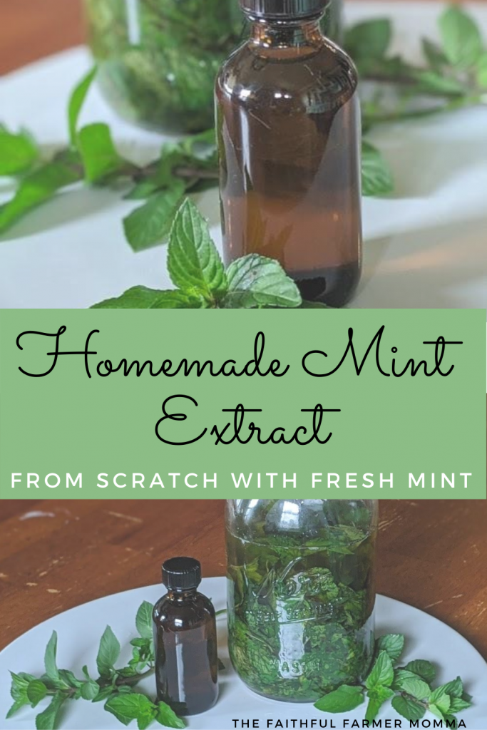 mint extract homemade peppermint fresh mint leaves