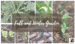 what to plant in your fall and winter garden